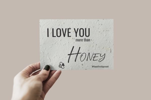 SALTand-i-love-you-more-than-honey-postcard