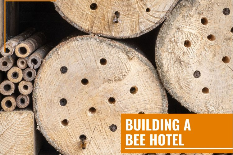 do it yourself bee hotel