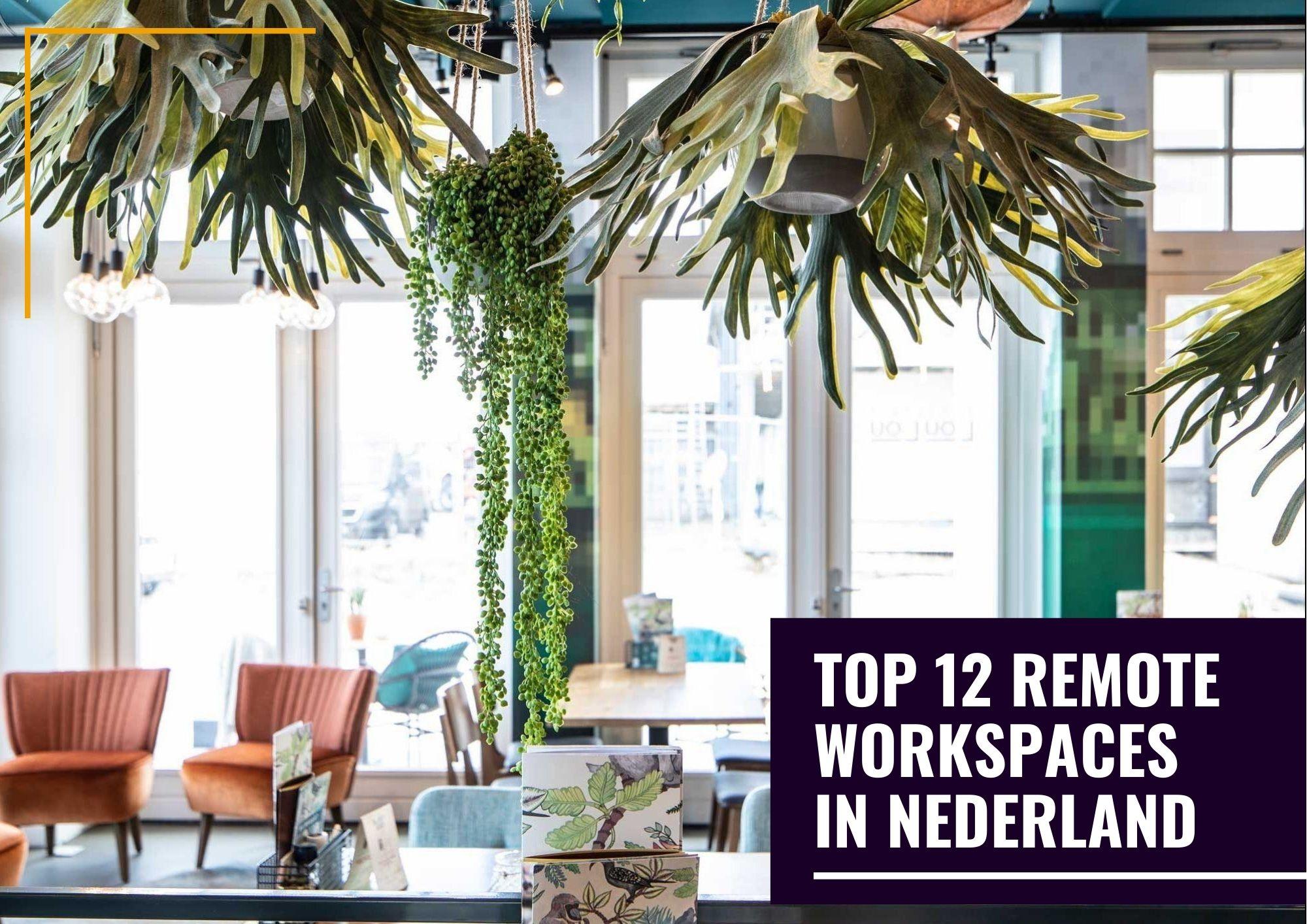 remote werken in nederland